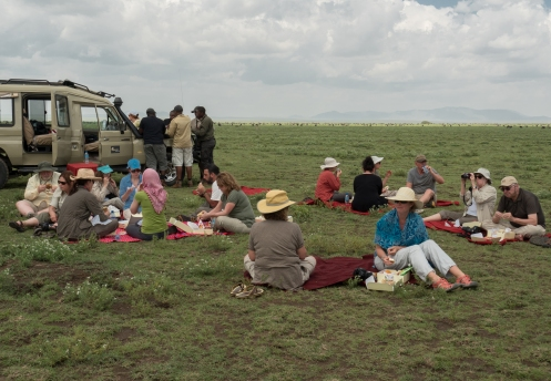 Lunch Among the Wildebeests.jpg