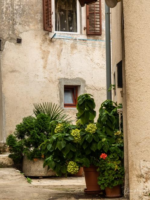 Garden Corner in Moscenice