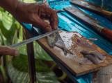 Filleting Mackerel