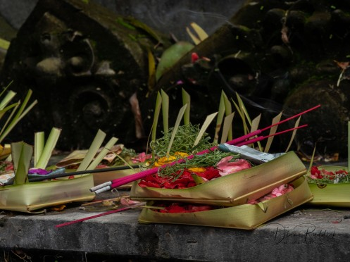 Offerings with Incense