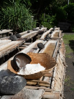 Salt Drying Troughs-2